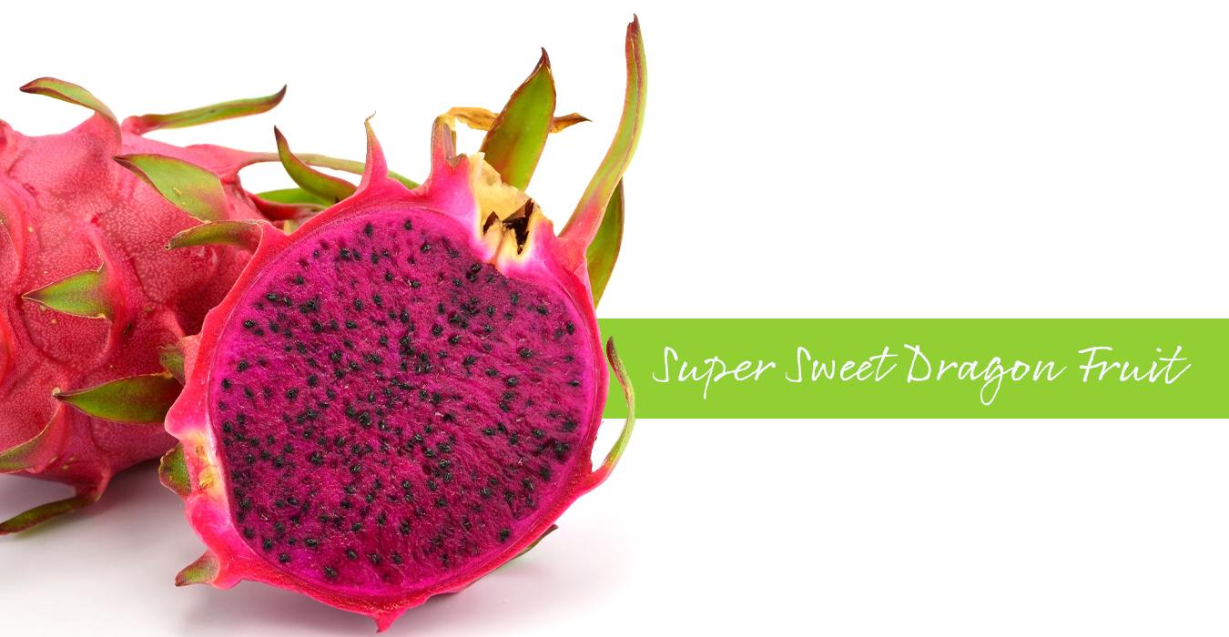5 Produk Slider_Dragon Fruit