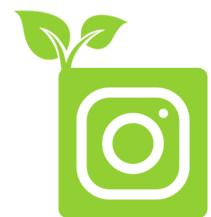 AL 3 Instagram Icon copy